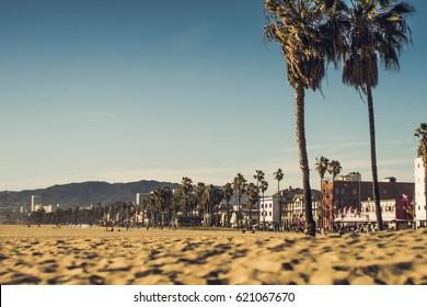 Venice Beach California / beach and palms
