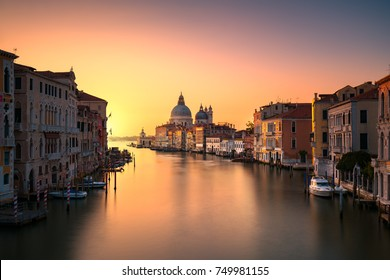 Venice grand canal view, Santa Maria della Salute church landmark at sunrise. Italy, Europe.