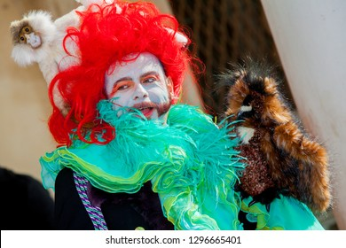 Venice, Italy - February 14, 2012: portrait of a funny man with colorful weird carnival costume, red toupee, a plush monkey sitting on his head and an undifined blush bird on his shoulder