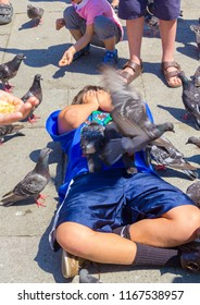 VENICE, ITALY - JULY 18 2014: the pidgeons of Saint Mark's Square are quite tame and love snacks