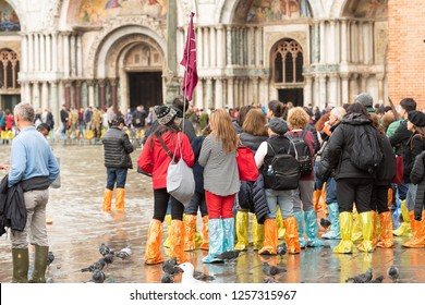 VENICE, ITALY - NOVEMBER 01, 2018:  A tour group wearing coloful waterproof boots and pigeons in piazza san marco during a flood.