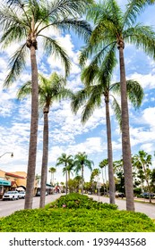 Venice, USA - April 29, 2018: Venice avenue road with rows of lined lining palm trees along street in historic downtown of little Italy old town with stores and shops in Florida