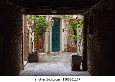 Venice/Italy - 10 27 2018: little cute patio with flowers and greenery inside. Courtyard with a blue wooden beautiful entrance door. Brickwork. Small garden in the courtyard of a residential building