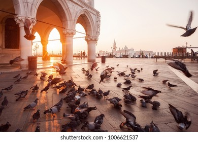 Venice,Italy - 3 November, 2017: famous San Marco Square at sunrise