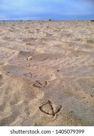 Ventura Beach, California Seagull Footprints