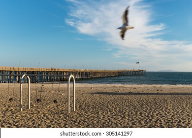 Ventura Pier with Seagull photobomb