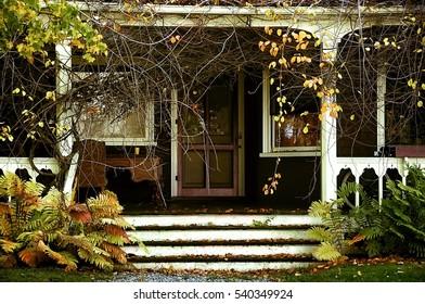 veranda of an abandoned house in the garden. Vintage photo. Autumn. old wooden veranda overgrown with vegetation