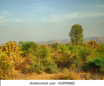 Verdant landscape. Green hills at entrance to plateau Deccan, India. Forest in late spring