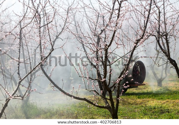 Veria, Greece - March 19, 2016: Farmer with tractor using a air blast sprayer with a chemical insecticide or fungicide in the orchard of peach trees in northern Greece