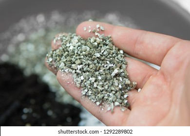 Vermiculite in the hands of a man. A mixture of earth, perlite and vermiculite. The concept of growing medical cannabis in the doore indoor. Substrate for marijuana. Close up. Soil growing cannabis.