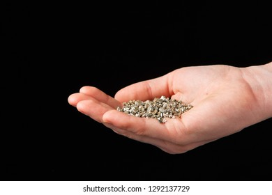 Vermiculite in the hands of a woman. Close up. Soil growing cannabis. A mixture of earth, perlite and vermiculite.