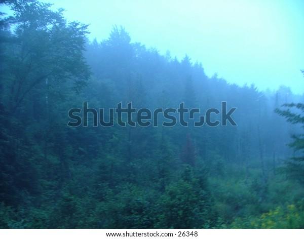 A Vermont rain