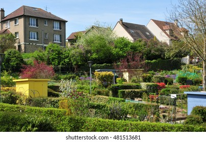 Verneuil sur Seine, France - mai 2 2016 : the allotment garden in spring
