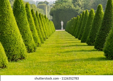 VERSAILLES, FRANCE - June 10, 2018: Row of sculpture trees and white statue at the end of the row in the garden of the  Palace of Versailles.