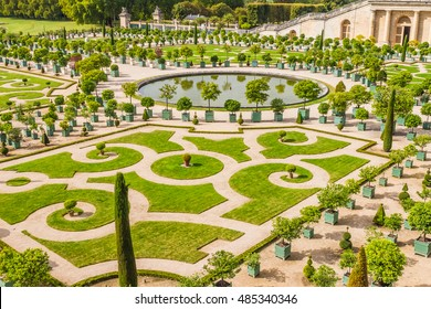 VERSAILLES, PARIS, FRANCE - SEPTEMBER, 2015: Orangerie Parterre with palm trees, oleanders, pomegranate, eugenias and orange trees built by Jules Hardouin-Mansart (1684 - 1686) in Versailles palace.