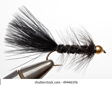 Versatile Fishing Fly that Imitates a Minnow; The Black Woolly Bugger