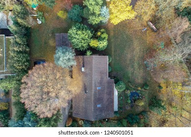 Vertical aerial view of a detached house with a plot of land with trees, lawn and a small pond.