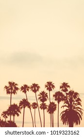 Vertical Background Image of Palm Trees at Sunset with Copy Space