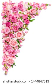 Vertical border of fresh roses on a white background. Wedding or Valentines Day theme.
