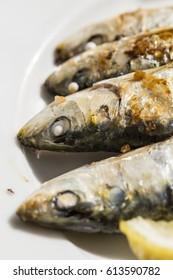 Vertical Close Up View Of Traditional Malagenean Cuisine dish Espeto de Sardinas, Selective Focus