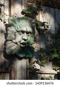 Vertical closeup of a green man plaque on an outdoor wooden wall. Foliage face figure with ivy.