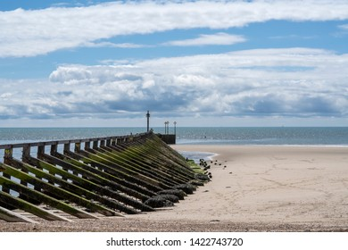 Vertical and diagonal wooden sea defences at the mouth of the River Arun, Littlehampton, West Sussex, UK where this fast flowing tidal river meets the English Channel. The wood is covered in seaweed.