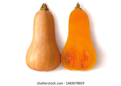 Vertical dissected butternut or Cucurbita moschata on white background