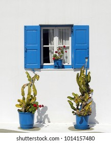 Vertical format: Two green cacti in bright blue planting pots, against a white wall, below a window with blue wooden shutters, with a green plant with red flowers on the sill, Mykonos, Greece.