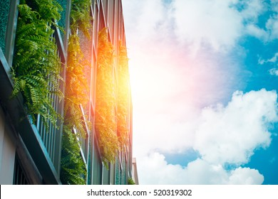 vertical garden at the building wall with blue sky, modern office building architecture make ozone in modern city.