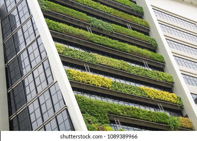 vertical garden a concept of sustainable building, eco building landscape climbing plants