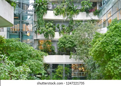 Vertical garden with green trees on the building. Green building, eco friendly business concept.