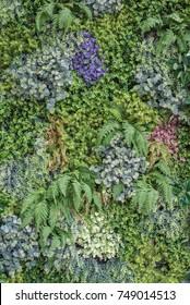 Vertical Garden Texture Images Stock Photos Vectors Shutterstock