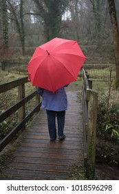 Vertical image of a mature woman walking in the rain with a red umbrella