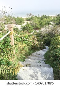 A vertical image of stairs leading down to the beach in Nantucket, Massachusetts.