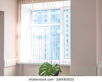 vertical jalousie blinds on the window on a sunny day, sunshine through window