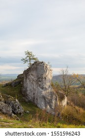 Vertical mountain landscape of limestone cliffs against a blue sky. The Zborow Massif in Central Poland on the Krakow-Czestochowa Upland