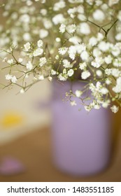 vertical orientation color image with very limited depth of field of baby's breath flowers in a purple vase