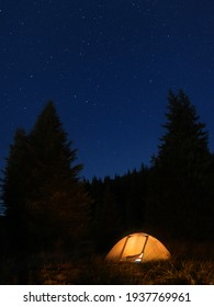 Vertical Panorama of a tent with a spruce forests and stars on the background. Perfect summer night for camping