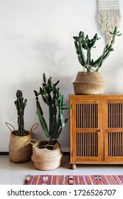 Vertical photo of authentic room with comfortable and cozy interior design, wooden dresser, ethnic rug on floor, cactus plants in baskets against white wall on background