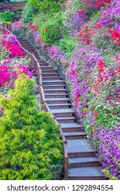 """Vertical photo of a long flight of steps with colourful flowers and plants surrounding the staircase steps in South Korea's """"Garden of Morning Calm""""."""