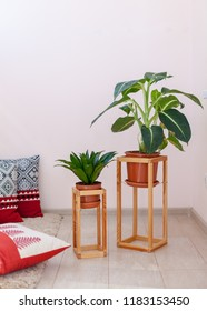 Vertical photo of simple, minimal, wooden shelf, board, construction frame for two green plant flowers stand against pasrel pink wall near soft pillow