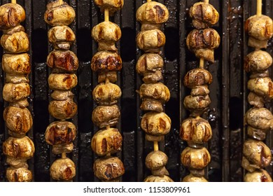 vertical scallop mushroom kebab mini grilled snack appetizing delicious picnic outdoor recreation