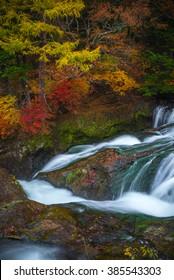 Vertical shot of Autumn leaves at Ryuzu waterfall from Nikko Japan