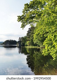 A vertical shot of a beautiful lake surrounded by nature in Larvik, Norway