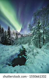 A vertical shot of a beautiful snow covered forest and mountains under the amazing northern lights in Norway