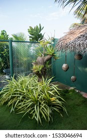 Vertical shot of a cozy corner of a garden with a green fence, small aloe vera plants on a tree trunk, a yucca flamentosa (Golden Sword), coconut lamps hanging from a dry palm leaves thatched roof.