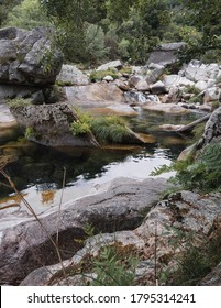 Vertical shot of green pond and waterfall, surrounded by stones and vegetation, in the forest of Geres National Park