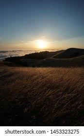 A vertical shot of high hills covered in dry yellow grass with the visible skyline on  Mt. Tam in Marin, CA