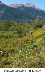 Vertical shot of a meadow with the  Red Mountains
