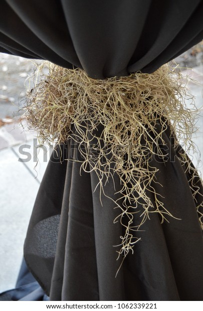 vertical spanish moss decoration on black table cloth